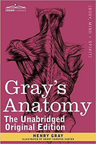Buy Gray\'s Anatomy: Descriptive and Surgical Book Online at Low ...