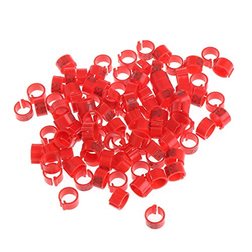 Misciu 100 Pcs 8mm Identify Ring Carrier Pigeon Training Supplies Leg Number Bird Bands (Red)