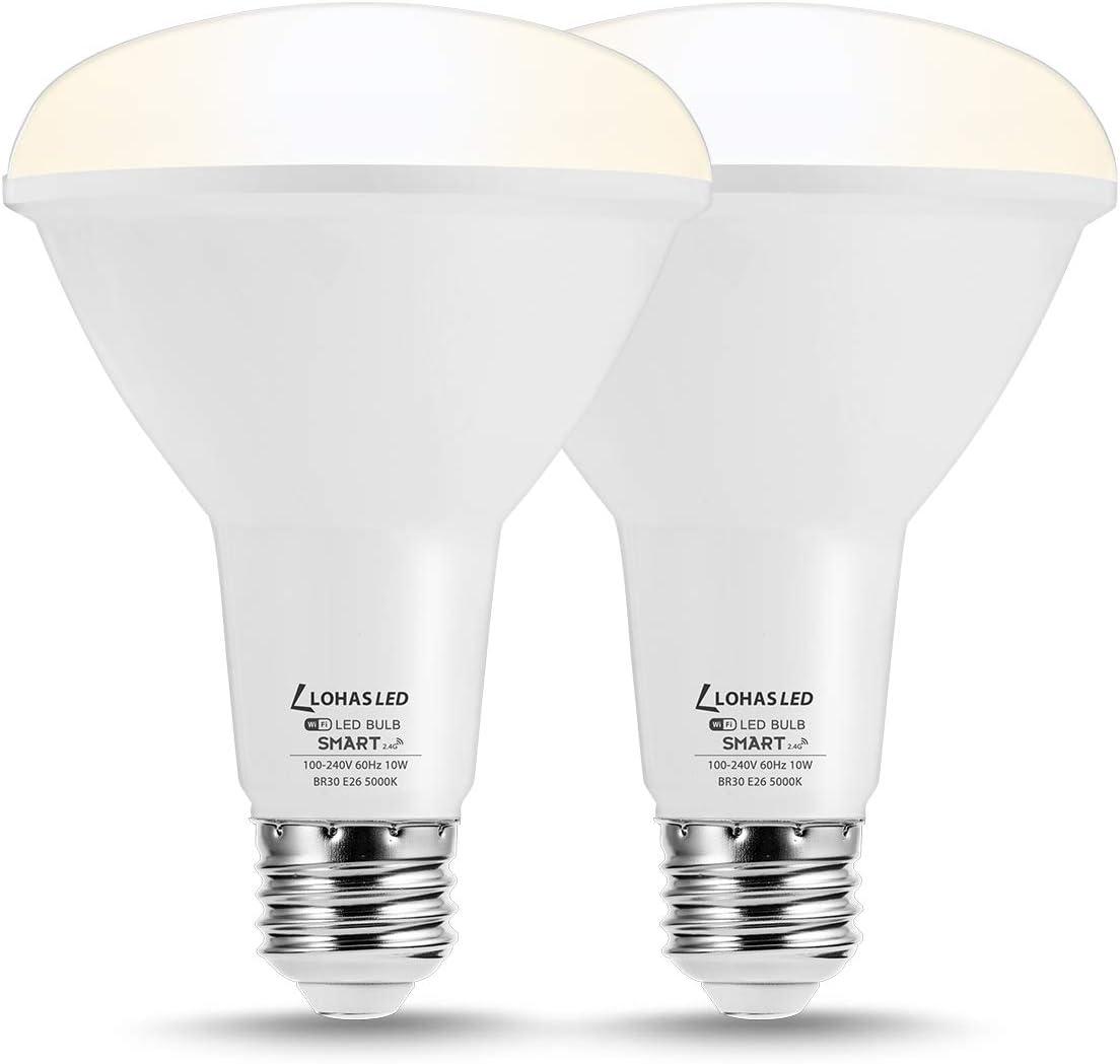 LOHAS BR30 Smart Light Bulb
