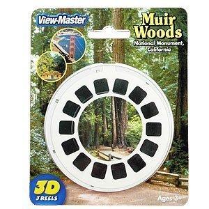View Master: Muir Woods