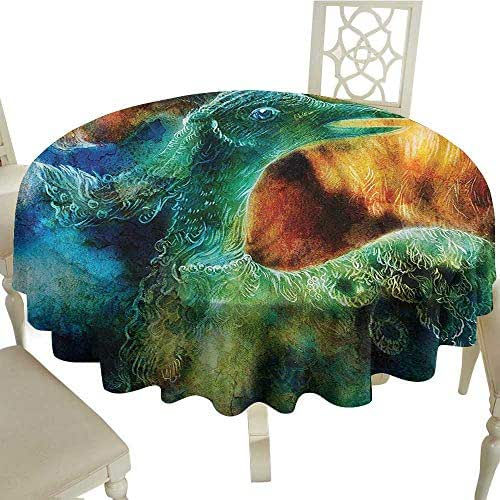 Cranekey Camping Round Tablecloth 60 Inch Fantasy,Mythical Legendary Phoenix Rebirth Long New Life from The Ashes Sun Exceptional Image,Multi for Home,Party,Wedding & More