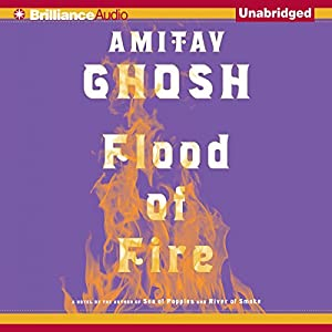 Flood of Fire Audiobook