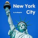 Audio Guide New York City Walking Tour by Andi Arndt Narrated by Andi Arndt
