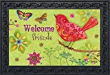 Butterflies and Birds Spring Doormat Indoor Outdoor Welcome Floral 18'' x 30''