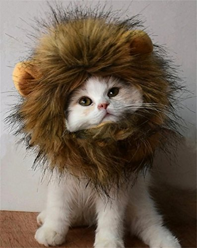 RosyLife Lion Mane Wig for Dog and Cat Costume Cat Pet Clothes