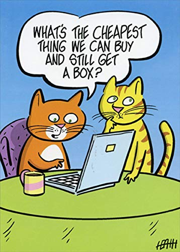 Cats Shopping Online - Oatmeal Studios Funny/Humorous Birthday Card