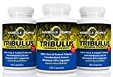 #1 Rated Muscle Force Tribulus Terrestris   Three Bottle Pack - 540 Capsules   1500mg of Bulgarian Tribulus   45% Saponins   New BIOAVAILABILITY Factor   Maximize Testosterone Levels   Ships Free