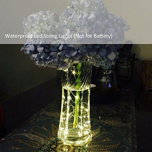 Cadrim 10M 100 LED Guirlandes Lumineuses,Lampes à cordes Etanche Décoration pour la fête Noël,Extérieure, Jardin, Maison, Mariage, Terrasse (Blanc Chaud) (1pcs)