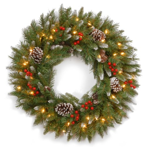 National Tree 24 Inch Frosted Berry Wreath with 50 Clear Lights (FRB-24WLO-1) (Christmas Wreath A For Decorating)