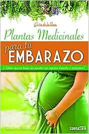 Plantas medicinales para tu embarazo: ¿Sabías que no todas