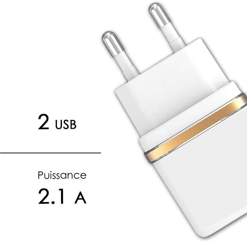C/âble Micro USB C/âble pour Blackview BV7000 Chargeur Mural Ultra-Puissant et Rapide 2X USB 5V // 2,1A Noir 1A et C/ÂBLE Micro USB Tress/é Nylon 1,3 M/ètre Transfert de donn/ées Super Pack Chargeur