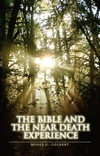 Image of The Bible and the Near-Death Experience