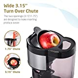 SKG A10 Slow Masticating Juicer Wide Chute Cold