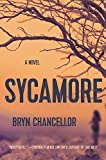 img - for Sycamore: A Novel book / textbook / text book