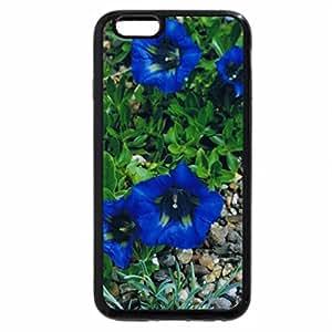 iPhone 6S Plus Case, iPhone 6 Plus Case, gentian flower