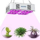 Cheap HILLPOW LED Grow Lights Full Spectrum UV IR 300W Plants Lamps for Indoor Plants Veg and Flower