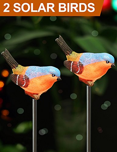 Bright Zeal [Pack of 2] LED Bird Figurines Color Changing Solar Stake Lights Outdoor – Garden Stakes Decorative Birds – Garden Figurines Outdoor Solar Decor Garden – Patio Lights LED Color Changing Review