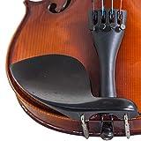 Paititi, 4-String Viola - Acoustic