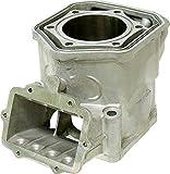 Sports Parts Inc SM-09602 Cylinder
