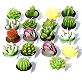 AI·X·IANG AiXiAng Handmade Delicate Cactus Candles for Home Decorative Cactus Candles Tea Light Candles 18 Pcs