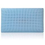 Blu Sleep Products Blu Sleep Ice Gel Memory Foam Pillow with Cover Queen