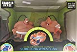 Remote Controlled Head-2-Head Fighters Sumo King Wrestling