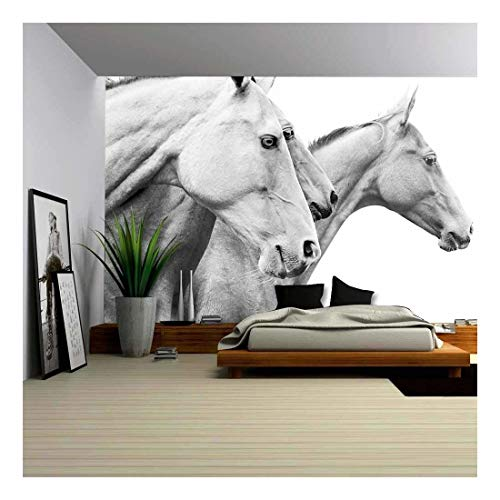 Wild Horses Peel - wall26 - Purebred Horses - Removable Wall Mural | Self-Adhesive Large Wallpaper - 100x144 inches