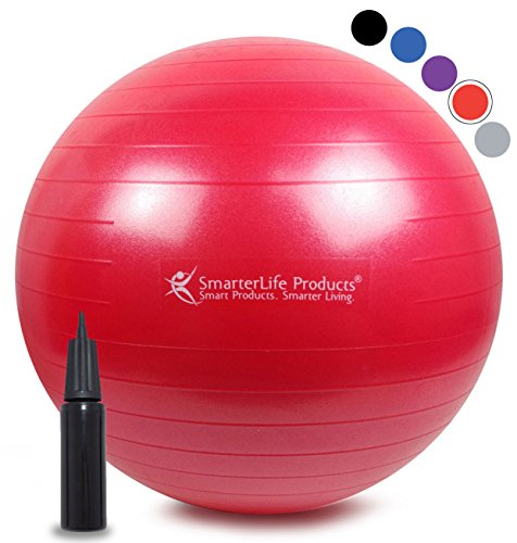 Exercise Ball for Yoga, Pilates, Therapy, Balance, Stability, Posture Support, Desk Chair...