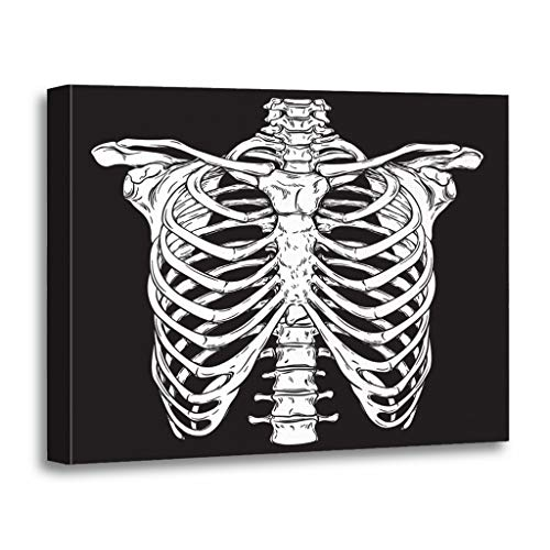 Emvency Painting Canvas Print Wooden Frame Artwork Line Anatomically Correct Human Ribcage White Over Halloween Costume Decorative 16x20 Inches Wall Art for Home Decor