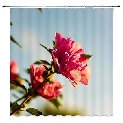 Amazon BCNEW Flower Shower Curtain Decor Blue Sky Red Flowers