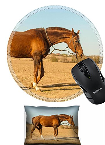 Liili Mouse Wrist Rest and Round Mousepad Set, 2pc Wrist support rest IMAGE ID: 27982026 Horse in countryside