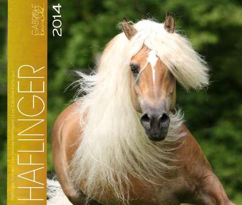 Haflinger 2014 Kalender: Haflinger Pferde - 46x39 cm