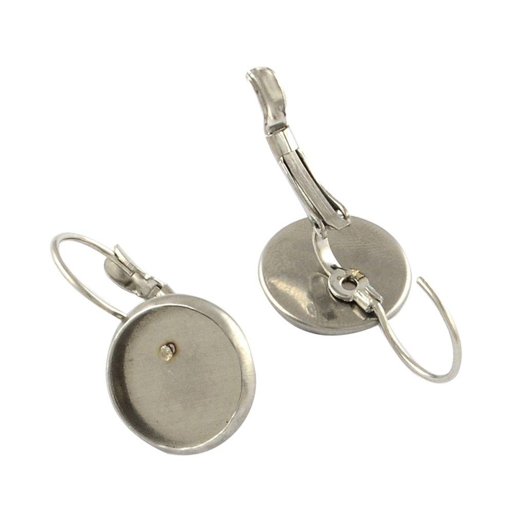 HOUSWEETY 10pcs Stainless Steel Leverback Earwires Lever Back Earrings Jewelry