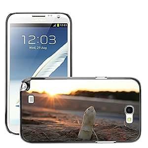 Print Motif Coque de protection Case Cover // M00238636 Espárragos puesta del sol Campo del // Samsung Galaxy Note 2 II N7100