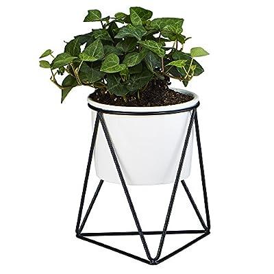 Planter Pot Indoor, Flowerplus 4.33 Inch White Ceramic Medium Succulent Cactus Flower Plant Round Bowl with Iron Rack Holder and Plants Sign for Indoors Outdoor Home Garden Kitchen Decor (Black)