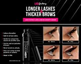 Eyelash Growth Serum 7.4 ml - Lash Science Brow & Eye Lash...