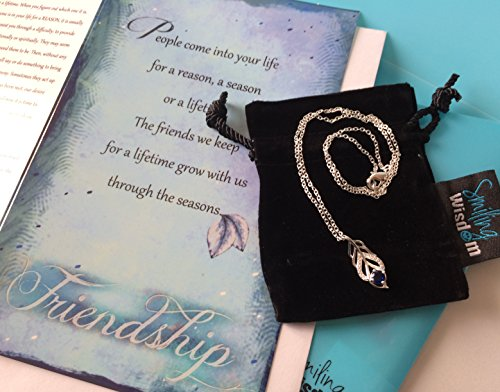 Smiling Wisdom - Blue Silver Leaf Necklace Friendship Gift Set - Reason Season Lifetime Friendship Greeting Card - Unique Gift Set For Best Friend BFF Bestie Woman - Silver Blue (Best Friend Card Ideas)