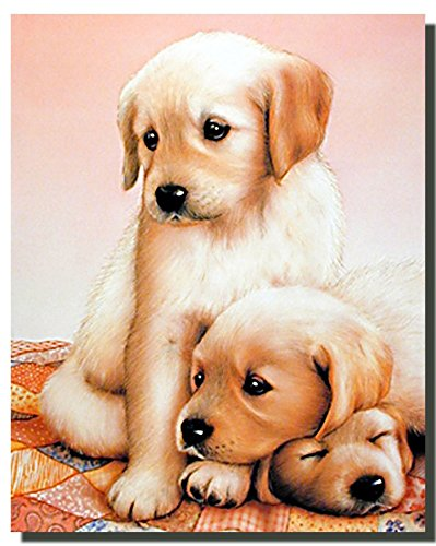 Cute Three Puppies Sleeping Dogs Kids Room Art Print Poster