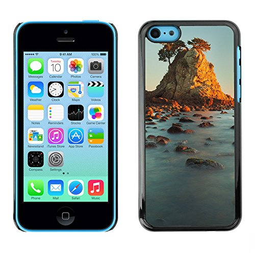 Premio Sottile Slim Cassa Custodia Case Cover Shell // F00003409 côte // Apple iPhone 5C