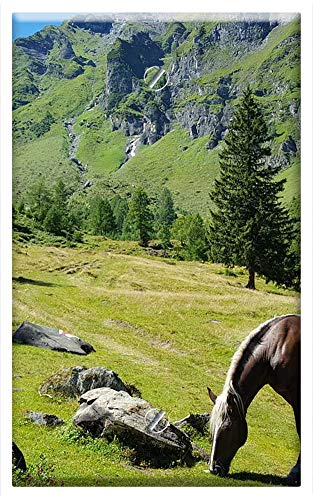 Single-Gang Blank Wall Plate Cover - Alm Horse Landscape Graze Pasture Mountains