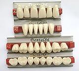 Dental Acrylic Resin Teeth Denture For Halloween