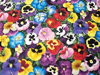 Amazoncom Pansy Fabric Pansies Flowers All Colors Bright Cheery