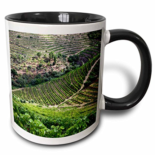 3dRose 188689_4 Portugal Pinhao The Vineyards of The Douro Valley Two Tone Mug 11 oz ()