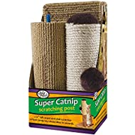 """Four Paws Super Catnip Cat Scratching Post, 21"""" Tall Sisal and Carpet Scratching Post"""