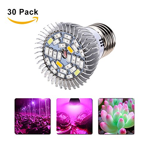 GlobalDeal LED Grow Light Bulb, 24w Plant Grow Light with Full Spectrum IR UV Grow Light for Indoor Plants Greenhouse and Hydroponic Growing Price: (30) by GlobalDeal
