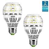 13W (100 Watt Equivalent) A19 LED Light Bulbs 2-Pack, 5000K Daylight White LED Bulbs, 1600 Lumens Light Bulbs, 270° Omni-directional Non-Dimmable LED, E26 Base, 5-year Warranty, SANSI