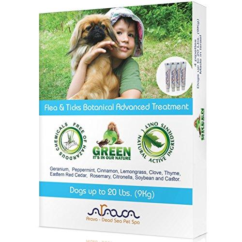 Arava Natural Flea & Tick Prevention for Dogs – 4-Doses - 100% Safe Dog Flea & Tick Control - Repels Pests with Natural Oils - Safe on Skin and Coats - Enhanced Defense & Prevention (3 Variations) by Arava - Dead Sea Pet Spa