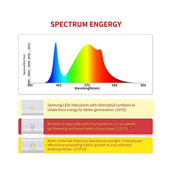 Led Horticole LM301B & Full Spectrum 3500K Light LED rouge avec minuterie 3/6/12 heures Lampe à double niveau de…
