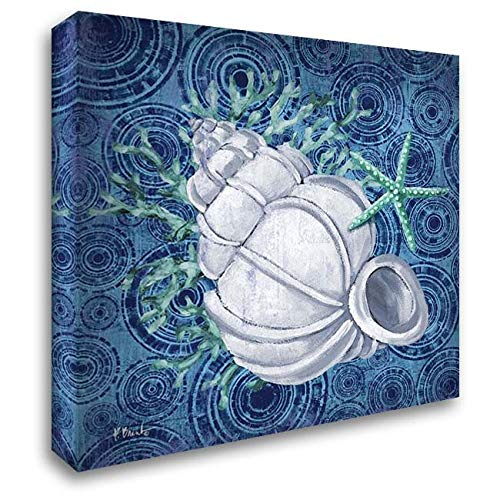 Silverplate Shell - Silverplate Shells III 32x32 Extra Large Gallery Wrapped Stretched Canvas Art by Brent, Paul