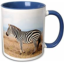 3dRose Danita Delimont - Martin Zwick - Zebra - Plains zebra or common zebra in Solio Game Reserve, Kenya, Africa. - 15oz Two-Tone Blue Mug (mug_188997_11)